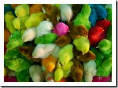 Paskalya yumurtaları