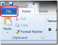 File Office 2010