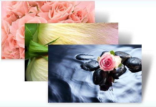 Rožės-tema