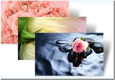 Roses-tema