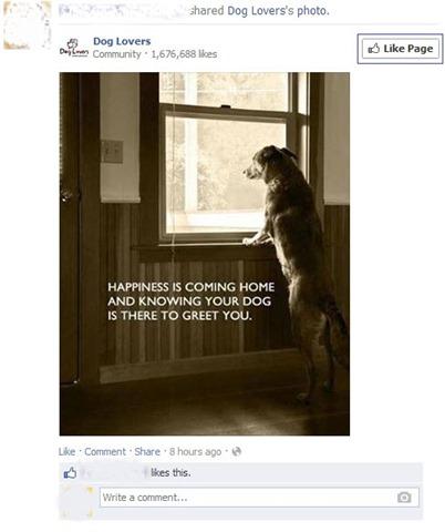 facebook-suggestion