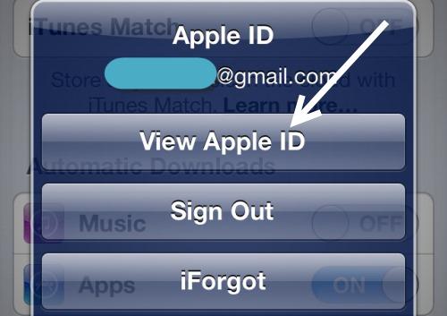 панорама-apple-документ за самоличност