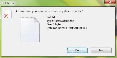 Visam laikui ištrinti-file